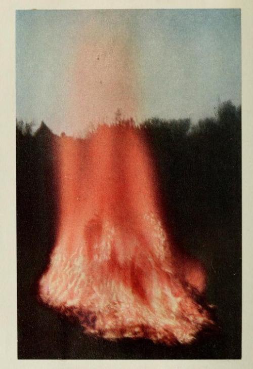 bonfire 1914