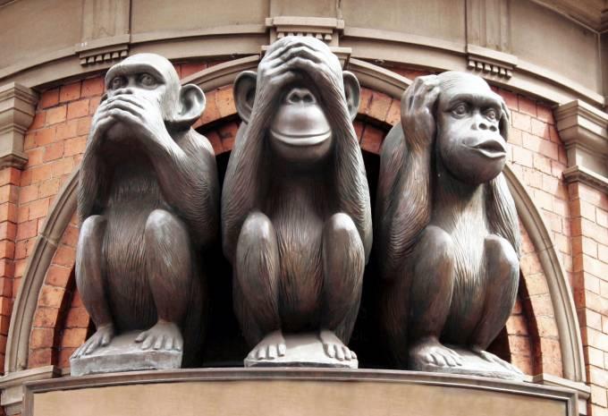 monkeys__article